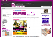 Neftys Financial Services